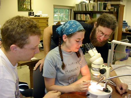 Aaron Ellison (right) works with undergraduate students Chelsea Kammerer-Burnham (center) and David Diaz (left) in the summer undergraduate research program.(Harvard Forest LTER). HFR LTER.