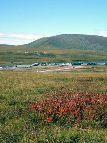 Arctic fertilization plots