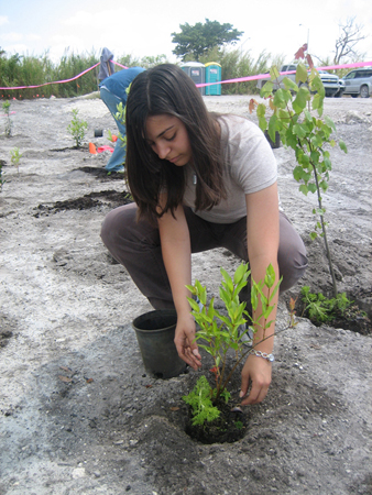 Katerina Potesta assists with planting native species at the CEMEX Florida East Coast Quarry Wetland Reclamation project