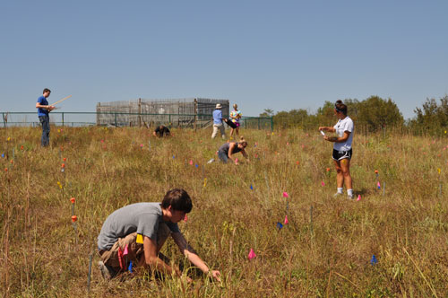 Students collecting data at Doane NutNet site