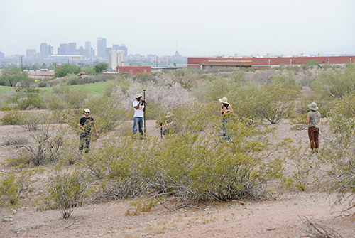 CAP fieldwork in an urban desert park