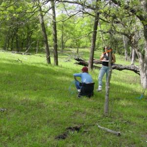 Surveying regrown vegetation after an experimental burn.