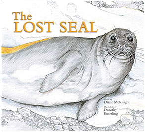 The Lost Seal cover Illustration