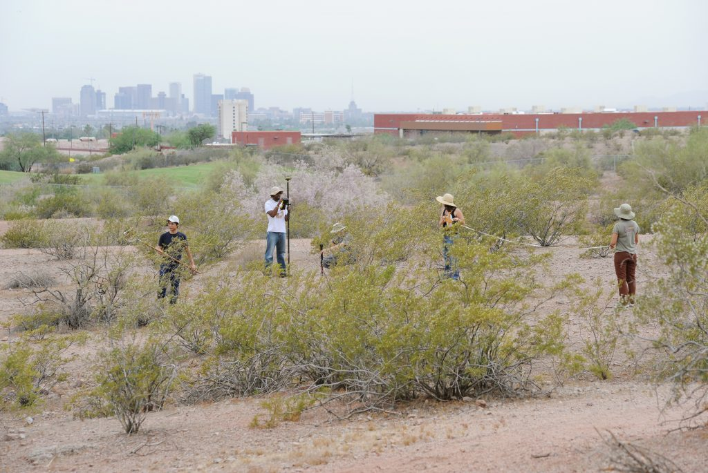 Three individuals collecting samples in desert brush.