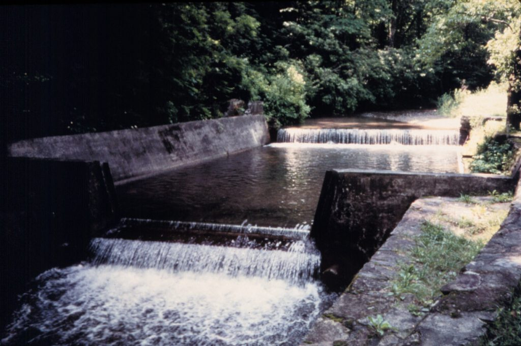 water flows over a river weir in the forest