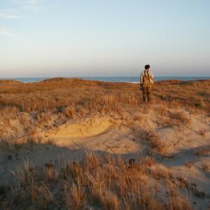 technician standing on dune, facing the ocean