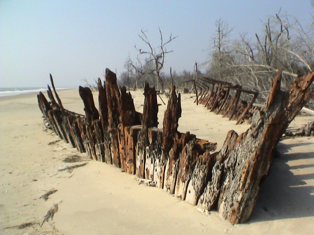 remains of a beached shipwreck