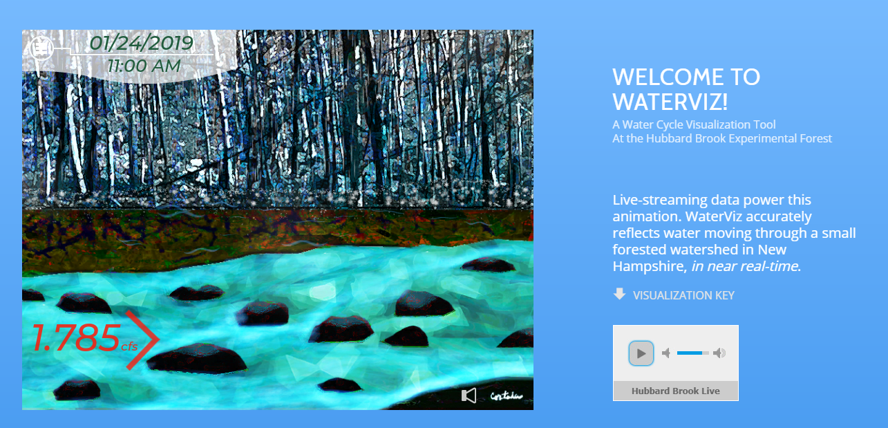 WaterViz artistically represents a live-stream of data from Hubbard Brook.
