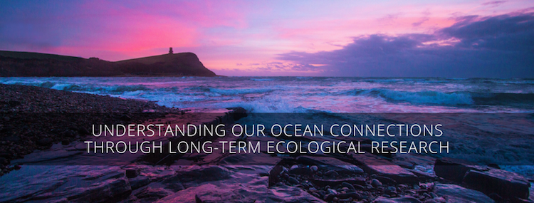 Understanding our ocean connections through long-term ecological research