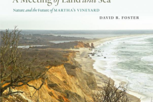 "book cover for ""A Meeting of Land and Sea"""