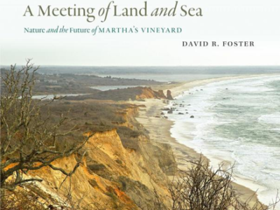 """book cover for """"A Meeting of Land and Sea"""""""