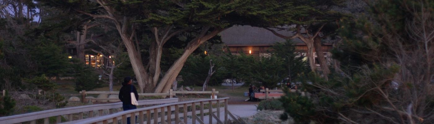 boardwalk and residential cottages in the evening light
