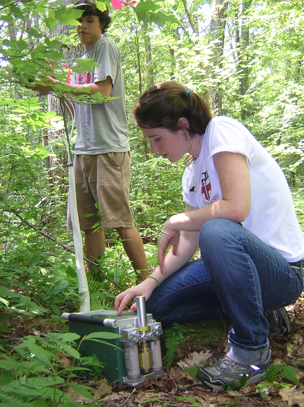 Fiona Jevin conducting research as an REU student at Harvard Forest in 2010.
