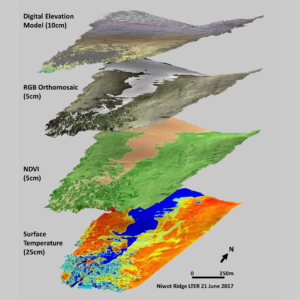 image layers derived from drone-based multispectral imaging