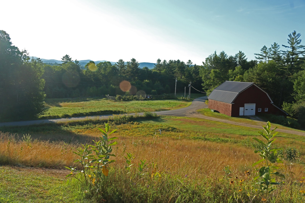 The Hubbard Brook Droughtnet site in New Hampshire is one of many around the world.