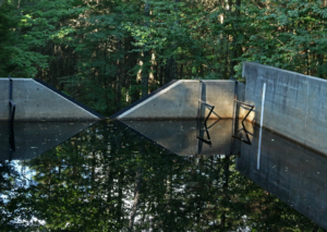 A weir reflects the trees above.