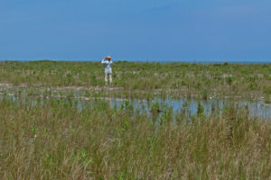 PhD researcher Joe Brown looking out over a barrier island in the Virginia Coast Reserve.