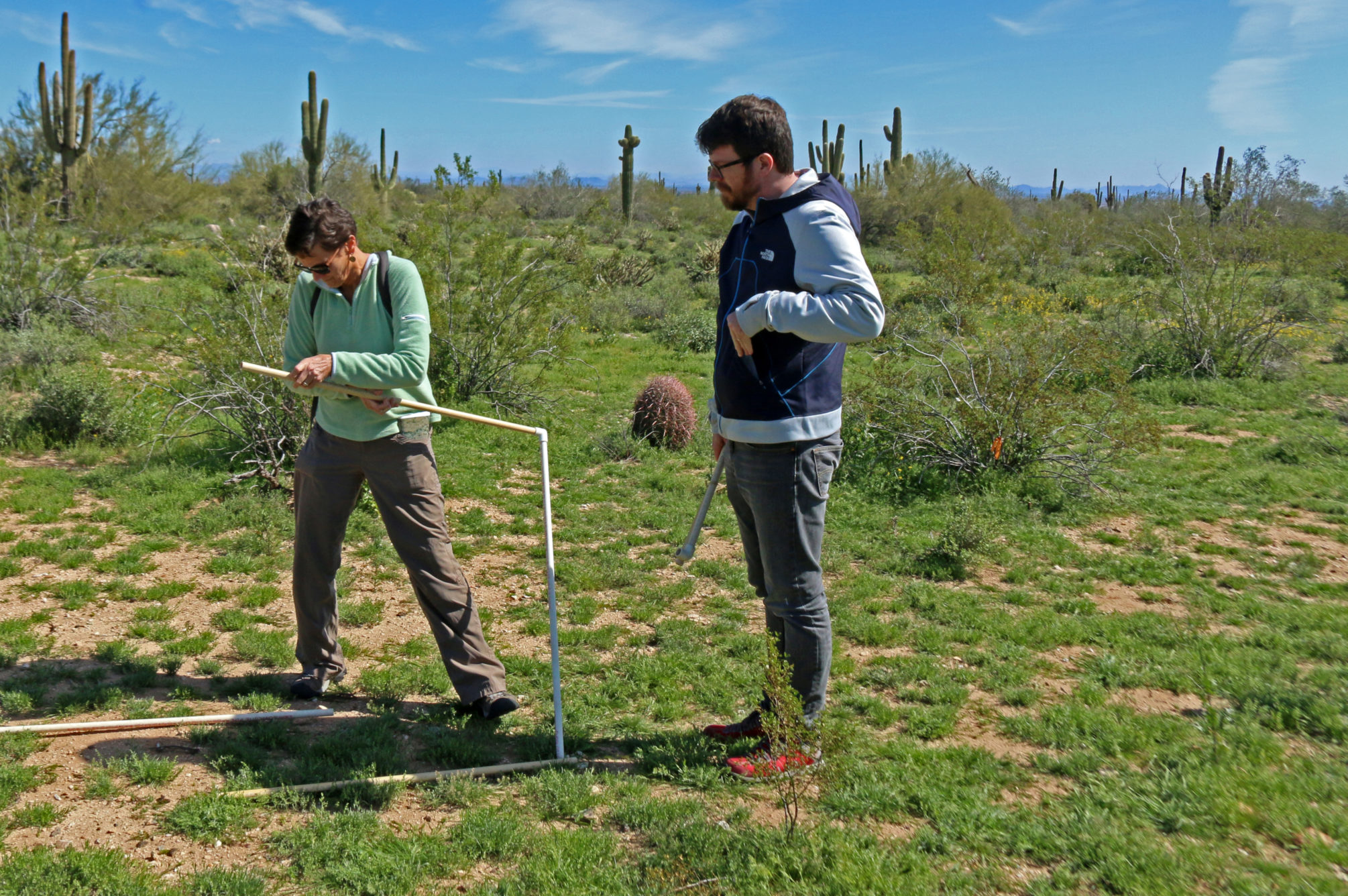 Mark Watkins and Sally Wittlinger setting up research plots at the CAP-LTER montane desert site.