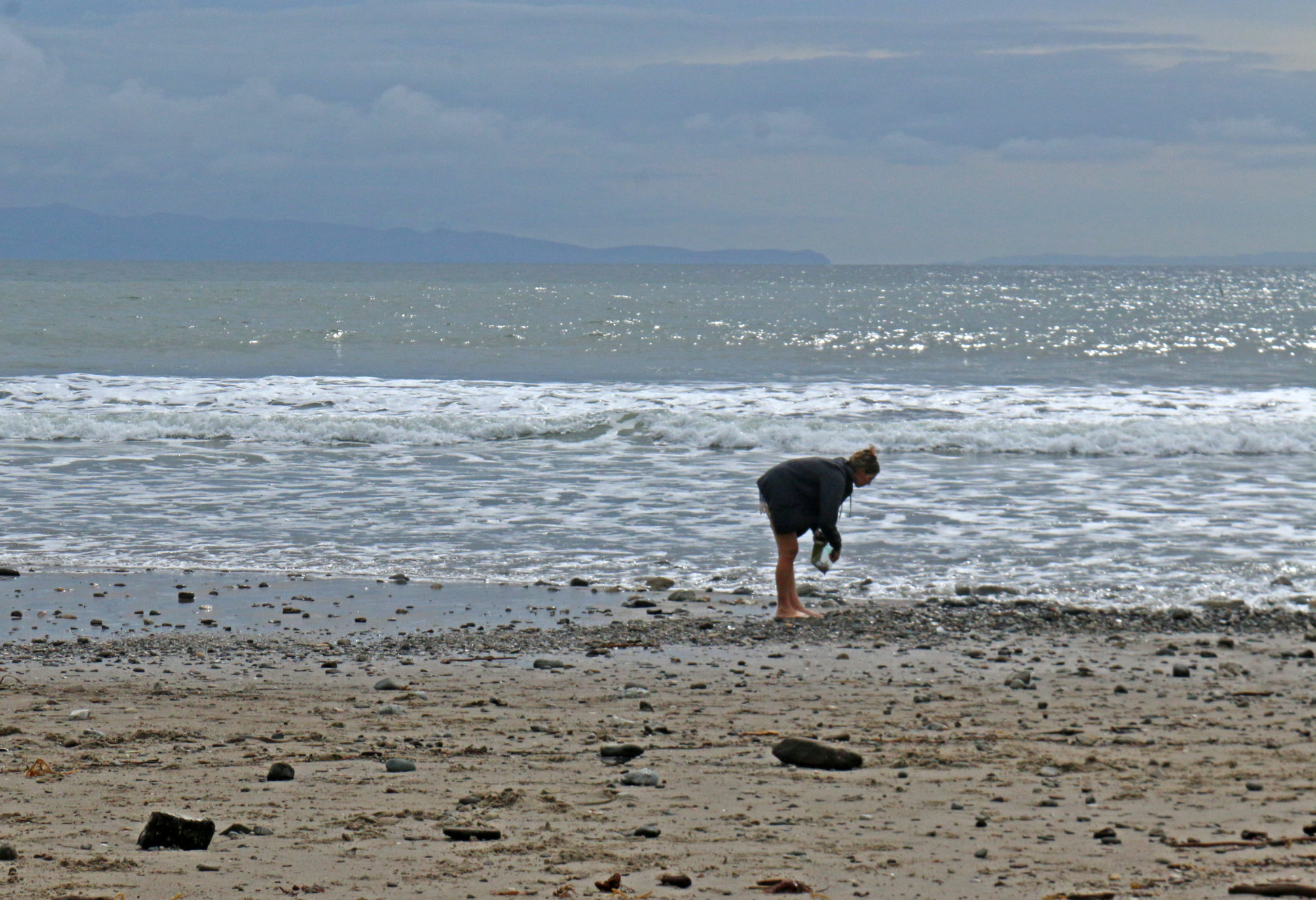 Person looking for kelp on beach