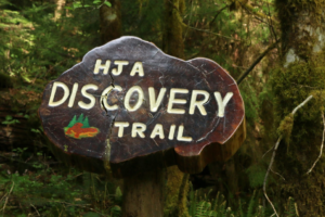The Andrews Discovery Trail trail entrance.