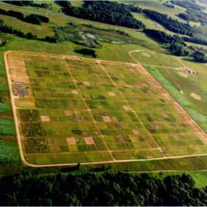 An aerial view of the Big Bio experimental plots.
