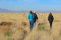 Researchers walk across the Sevilleta grassland.