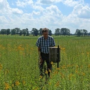 Dr. Haddad looks at a bee box.