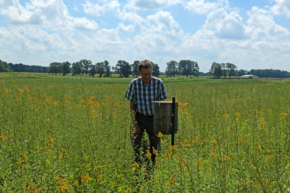 Dr. Haddad looks at a bee box.