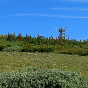 An eddy flux tower on top of Niwot Ridge.