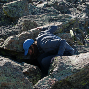 Looking for signs of pika among the rocks.
