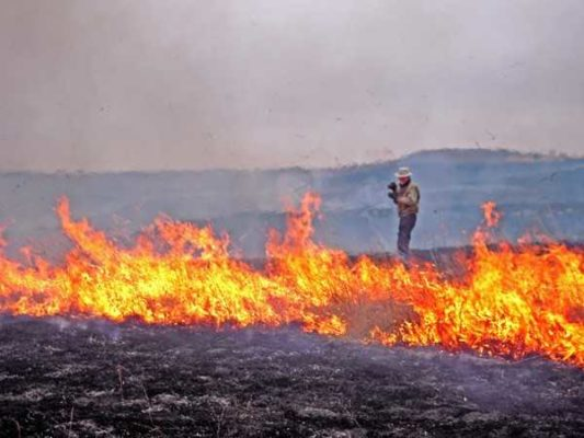Photographer Edward Sturr documenting a controlled burn. Photo: Elizabeth Dodd