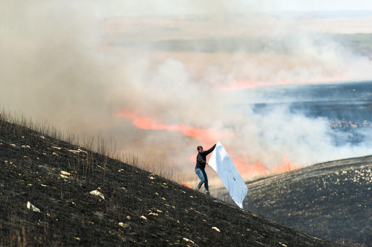 Artist Erin Wiersma creating charred biomass imprints during a controlled burn at Konza Prairie Station (KNZ).