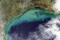 satellite view of gulf of mexico dead zone