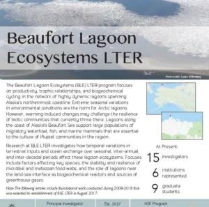 Beaufort Lagoon Ecosystems LTER site brief
