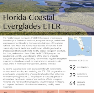 Florida Coastal Everglades LTER site brief 2019