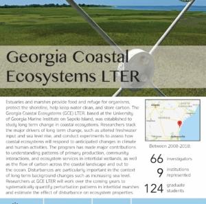 Georgia Coastal Ecosystems LTER site brief 2019