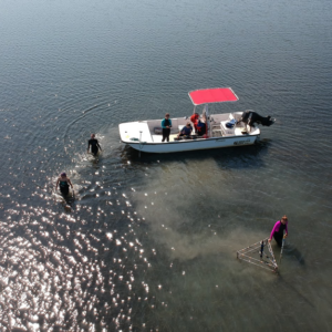drone view of researchers using eddy covariance system to measure seagrass metabolism.