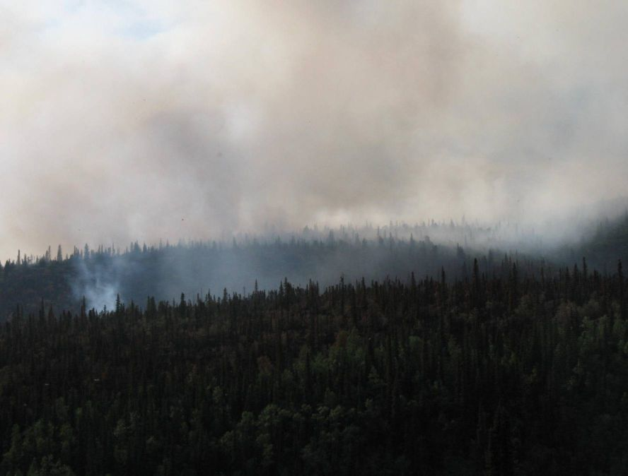 Smoke from a forest fire in an Alaskan boreal forest near Bonanza Creek LTER