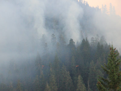 View of the Holiday Fire burning through H.J. Andrews Experimental Forest