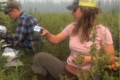 Emilia and her field tech, Elliot, in the field sampling black spruce forest fuel loads at Bonanza Creek LTER in Alaska.
